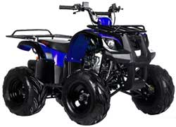 Запчасти для квадроцикла Ирбис ATV 110 U (Irbis) фото