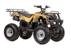 Запчасти для квадроцикла ATV 150 U (Irbis) фото