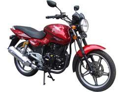 Запчасти на мотоцикл Рейсер Магнум (Magnum RC200-C5B, RC250-C5B) фото