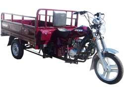 Запчасти для мотоцикла Muravei (Муравей) RC200ZH  фото
