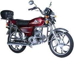 Запчасти на мотоцикл Ирбис Вираго (Irbis Virago) фото